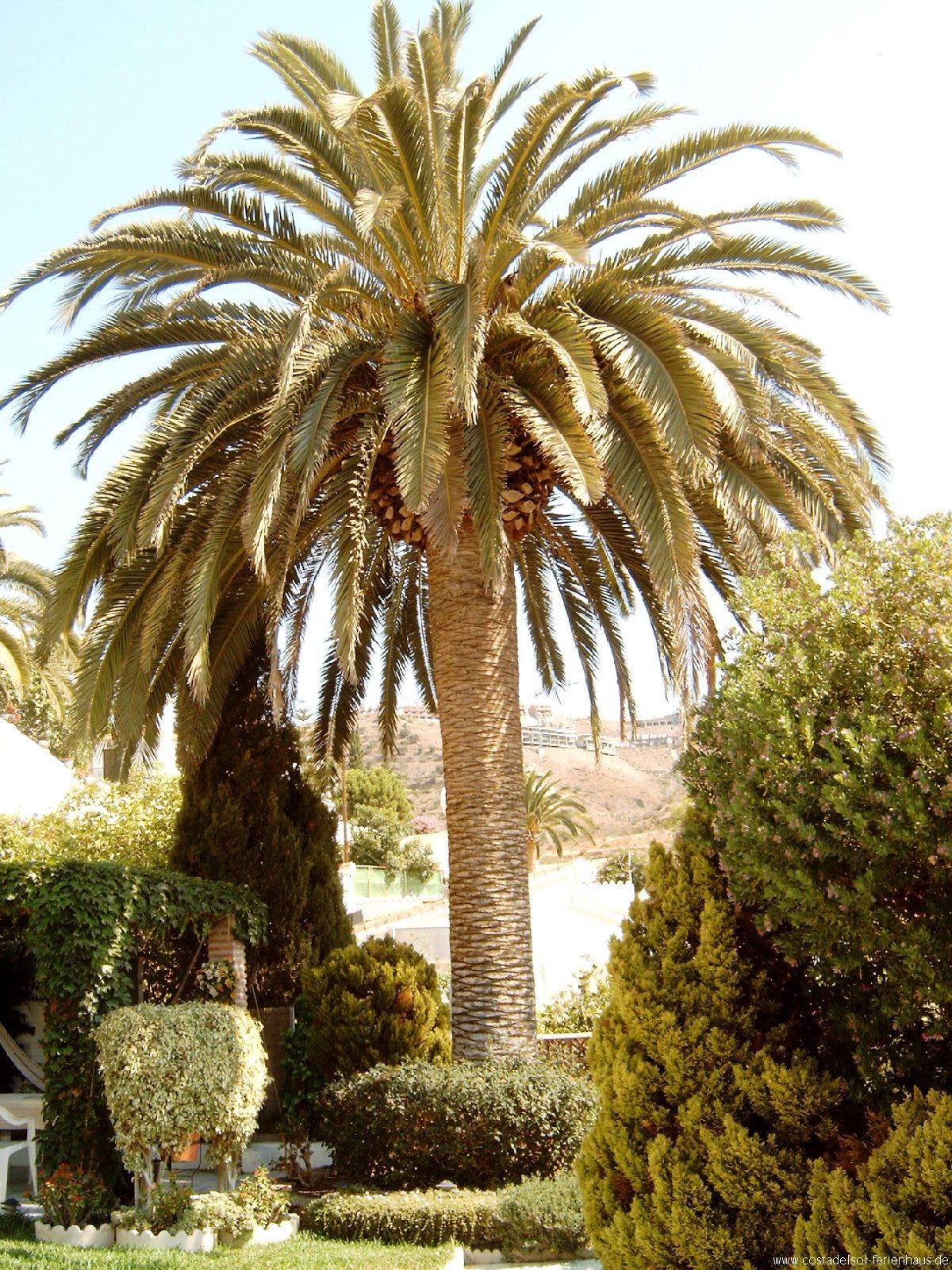 costa del sol andalusien spanien preiswerte